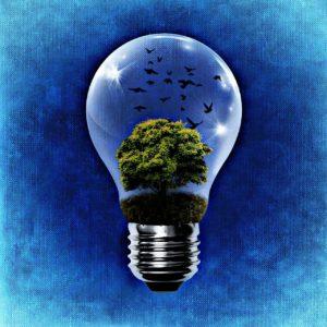 environment-1392332_1280